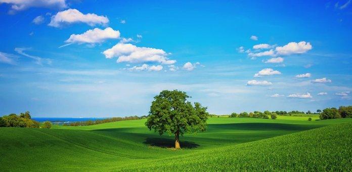 Изображение - Можно ли продать земельный участок по доверенности zemlya-696x341